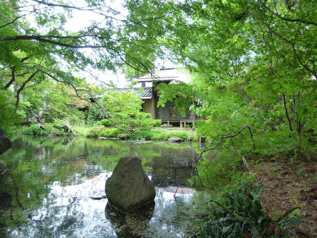 回遊式池と庭園