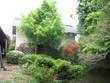 庭園には各種樹木