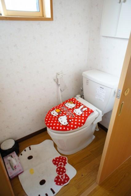 トイレ。 汲取式(簡易水洗)です。  前面道路付近に下水道が来ていますが、引き込みは困難な地形と考えられます。