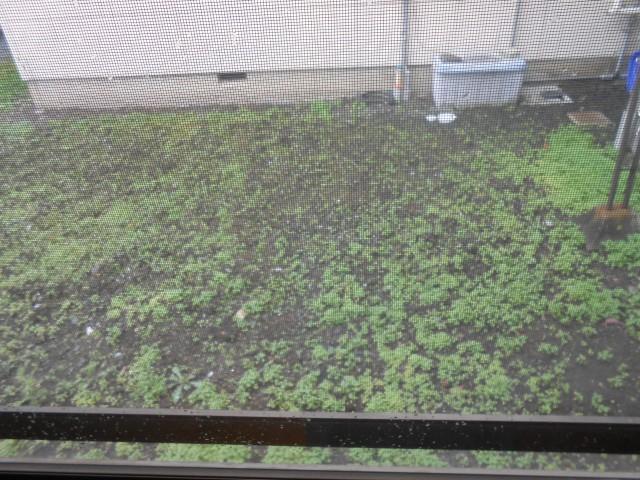 花壇や菜園にどうぞ