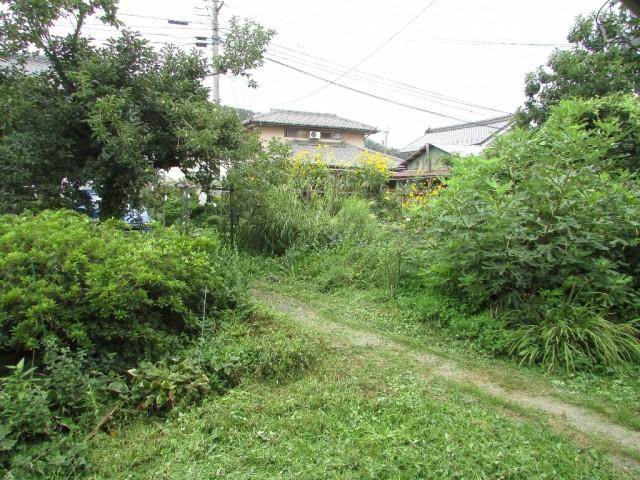 庭(母屋南側)