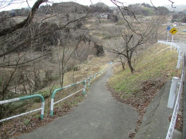 利用可能な菜園(道の左側)
