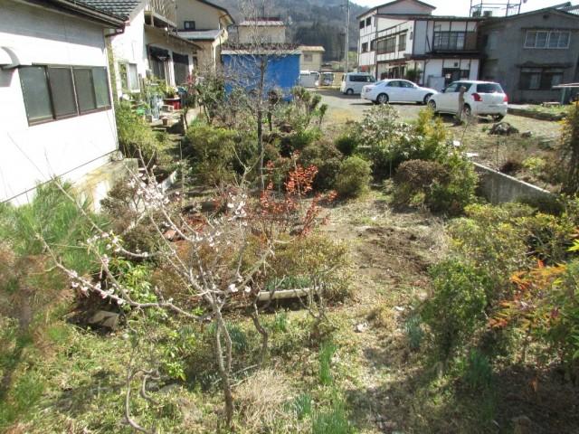 庭(建物南側)