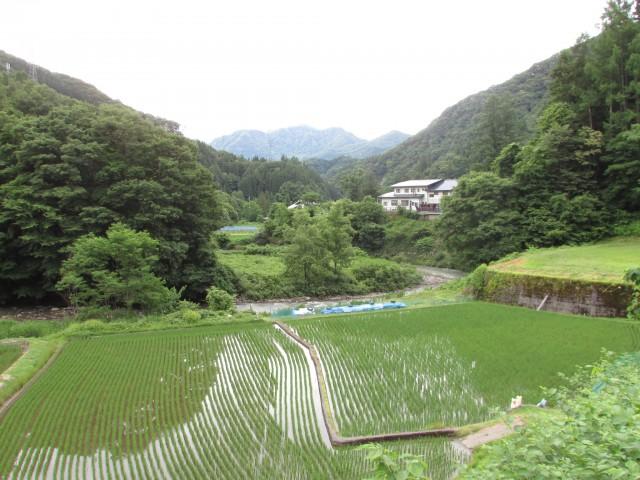 東側の景観